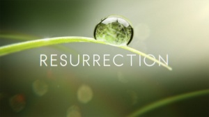 RESURRECTION3